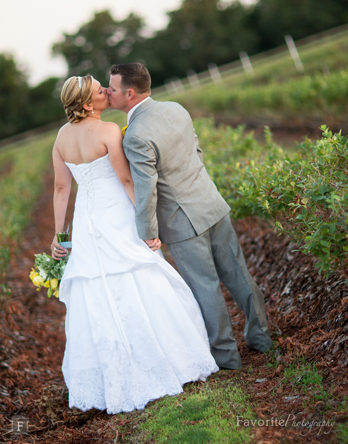 Southern Country Wedding Photographer