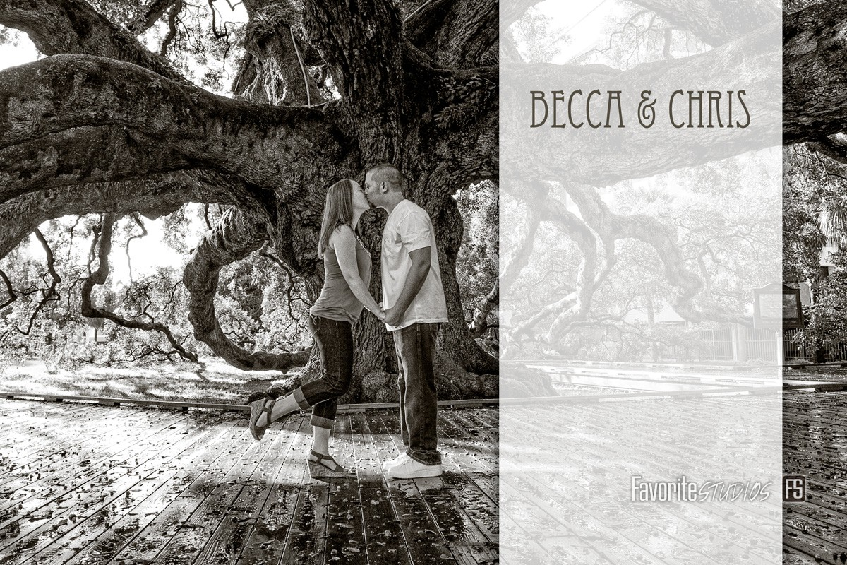 Photo Book, Story Book, Arcival Prints, Local Photographers